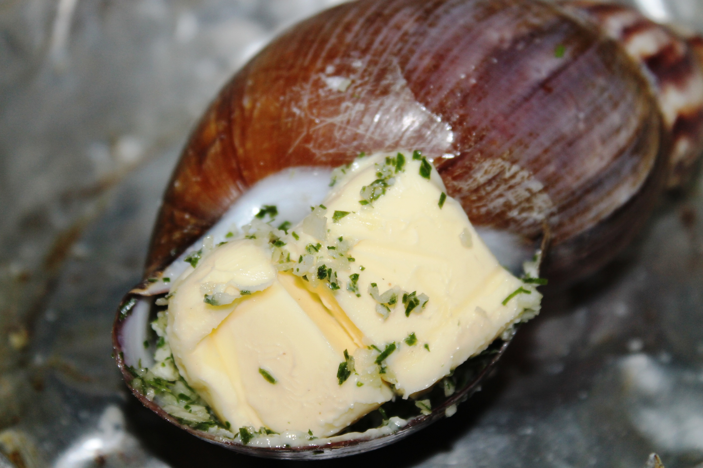 Recipe French Style Escargot Snail Butter Garlic Herbs Giant African Land Snail besides A French Food Vacation In Paris also Escargot Stuffed Mushrooms besides Lemon Sauce together with Food In Paris. on recipe for escargot
