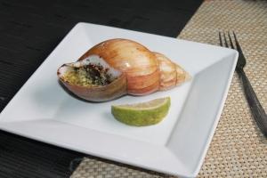 resep escargot bekicot ala perancis