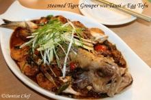 steamed tiger grouper garoupa tausi black bean tofu