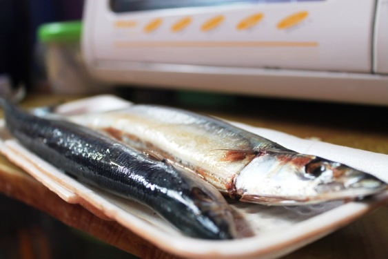 sanma pacific saury fish recipe kabayaki