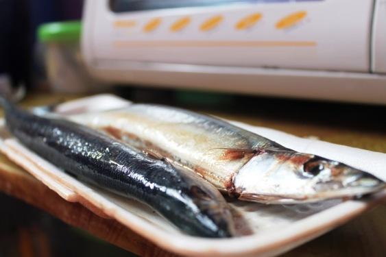 sanma pacific saury fish recipe kabayaki