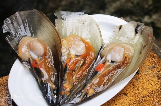 kerang kampak axe scallops callo de hacha scallop