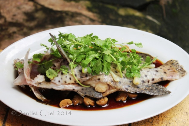 cantonese style steamed mouse grouper humpback fish soy sauce garlic ginger cilantro