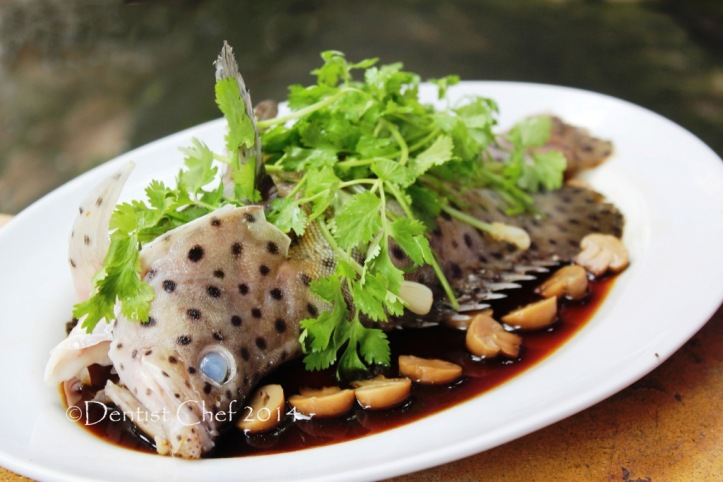 chinese style steamed mouse grouper humpback cod fish resep ikan kerapu bebek kukus tim ala hongkong