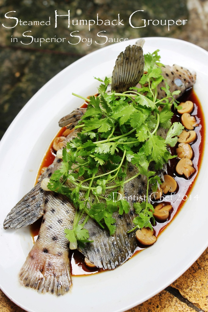 Recipe how to steam fish dentist chef for How to steam fish