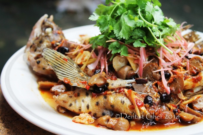 Spicy thai style steamed fish chili tamarind ginger live mouse grouper humpback recipe