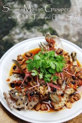 Thai style steamed fish mouse grouper steamed with chilli tamarind mushrooms black bean humpback grouper recipe