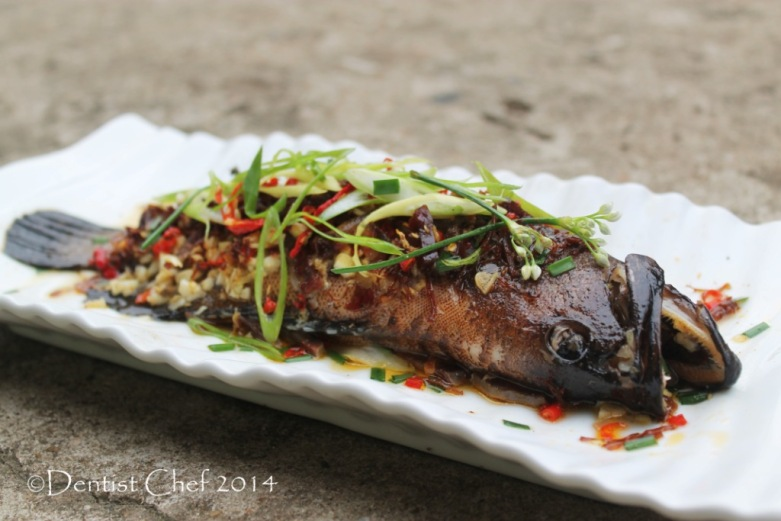 fish with xo sauce recipe chinese steamed grouper fish with dried chili ikan kerapu tim saus pedas cabe