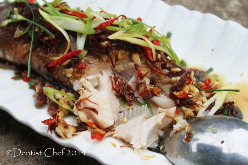 Steamed fish xo sauce chili dried scallop conpoy live grouper fish steam