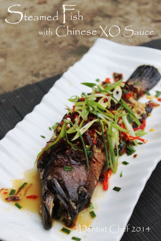 steamed fish xo sauce chinese steam red grouper coral trout blue spotted kerapu sunu hitam