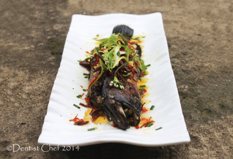 steamed fish xo sauce recipe steam live argus grouper chili garlic chives ginger recipe