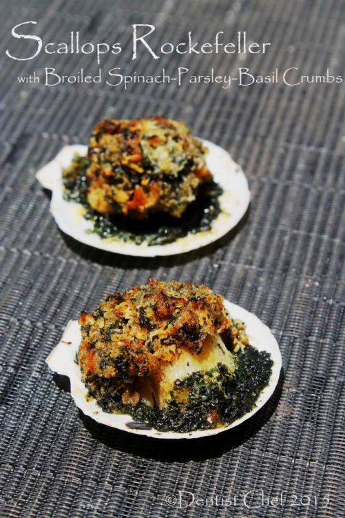 scallop rockefeller recipe broiled half shell scallop with parsley spinach butter basil breadcrumbs cheese gratin
