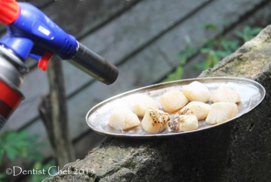 searing scallop using blowtorch seared scallops