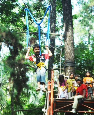 flying fox punti kayu