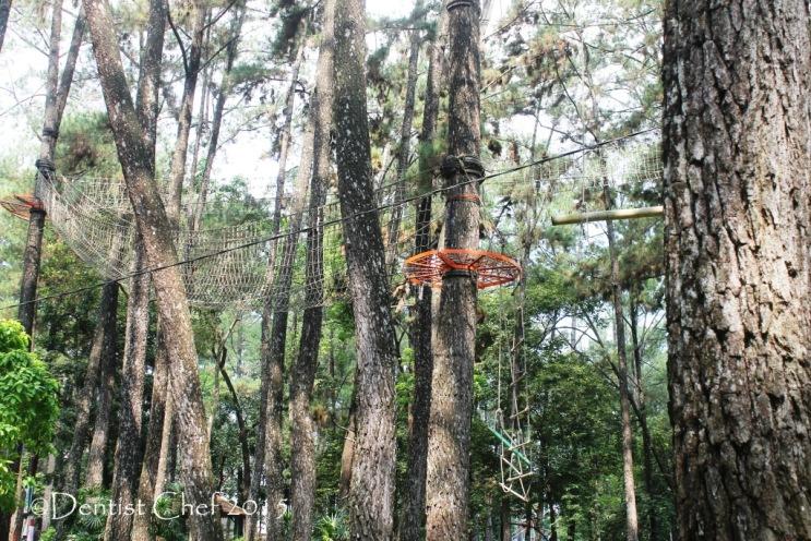 outbond punti kayu palembang