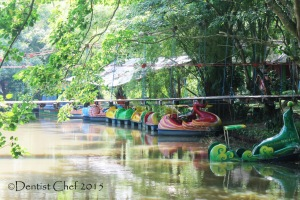 sepeda bebek air punti kayu palembang