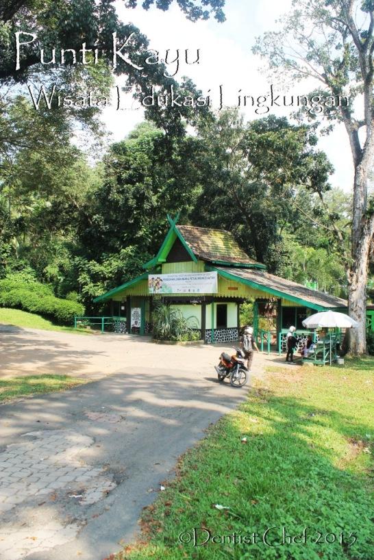 taman punti kayu palembang wisata edukasi lingkungan hutan pinus konservasi
