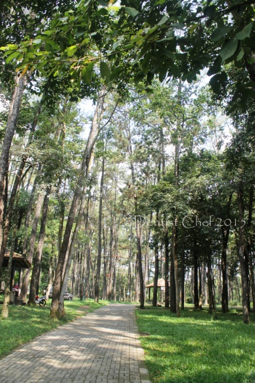 taman punti kayu palembang
