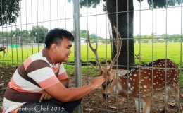 Dentist Chef Weekend Gateaway Lifestyle di Kota Palembang, Gaya Hidup Akhir Pekan Keluarga Trendy ala Wong Kito Galo dengan Grand New Toyota Avanza &Veloz