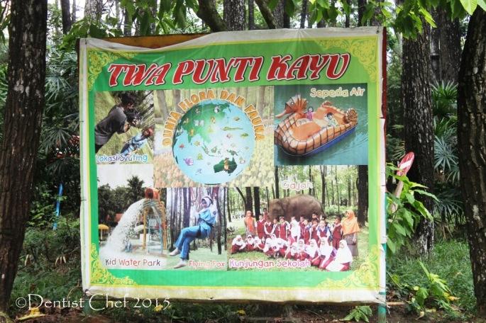 wisata punti kayu palembang lokasi foto kid park naik gajah tunggang kuda flying fox trekking sepeda air